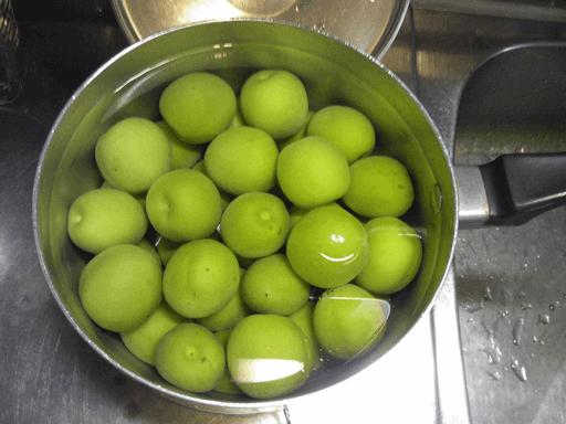 ビニール袋で作る手抜き梅干しの作り方